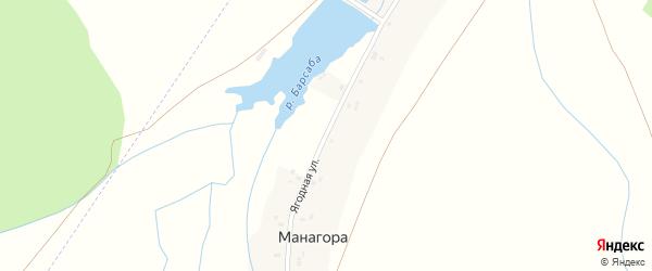 Ягодная улица на карте села Манагоры с номерами домов