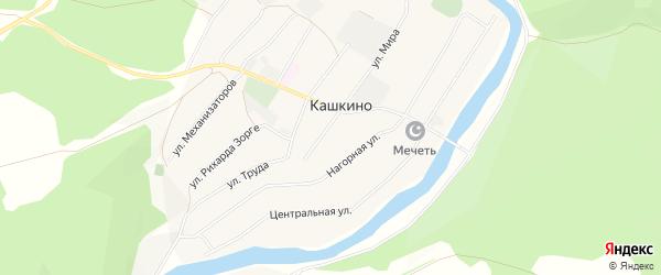 Карта села Кашкино в Башкортостане с улицами и номерами домов
