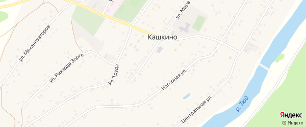 9 Мая улица на карте села Кашкино с номерами домов