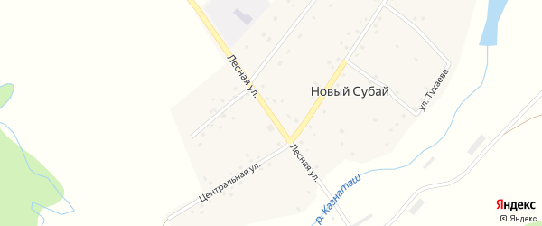 Лесная улица на карте села Нового Субая с номерами домов