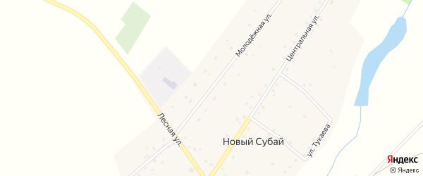 Молодежная улица на карте села Нового Субая с номерами домов