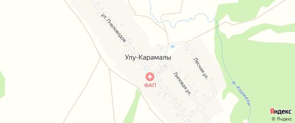 Лесная улица на карте деревни Улу-Карамалы с номерами домов