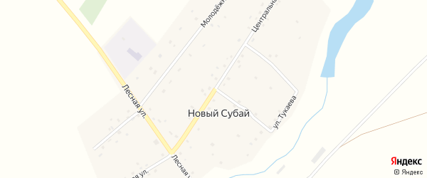 Центральная улица на карте села Нового Субая с номерами домов