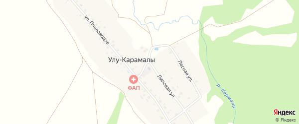 Липовая улица на карте деревни Улу-Карамалы с номерами домов