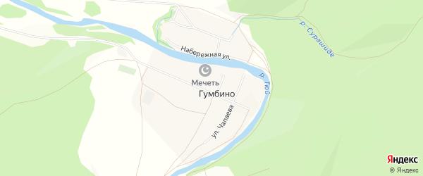 Карта деревни Гумбино в Башкортостане с улицами и номерами домов