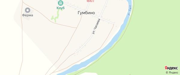 Улица Чапаева на карте деревни Гумбино с номерами домов