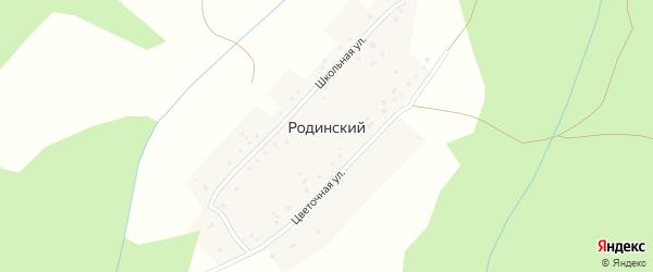 Цветочная улица на карте деревни Родинского с номерами домов