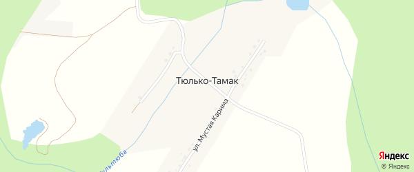 Улица Мустая Карима на карте деревни Тюлько-Тамака с номерами домов