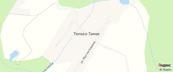 Габдулла Тукая улица на карте деревни Тюлько-Тамака с номерами домов