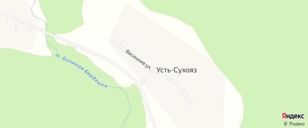 Весенняя улица на карте деревни Усть-Сухояза с номерами домов