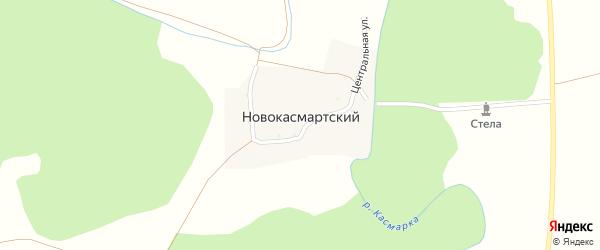 Центральная улица на карте деревни Новокасмартского с номерами домов