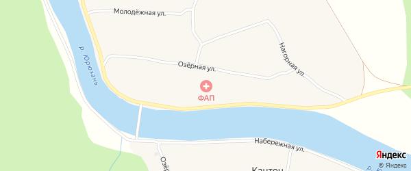 Центральная улица на карте деревни Нового Бердяша с номерами домов