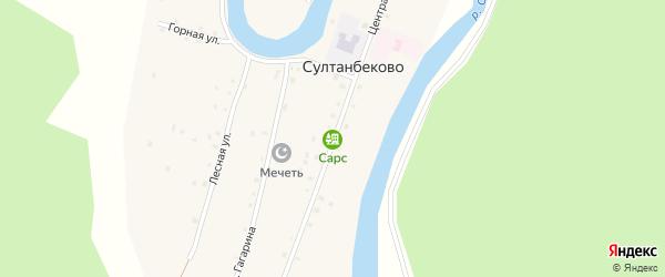 Центральная улица на карте деревни Султанбеково с номерами домов