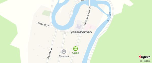 Береговая улица на карте деревни Султанбеково с номерами домов