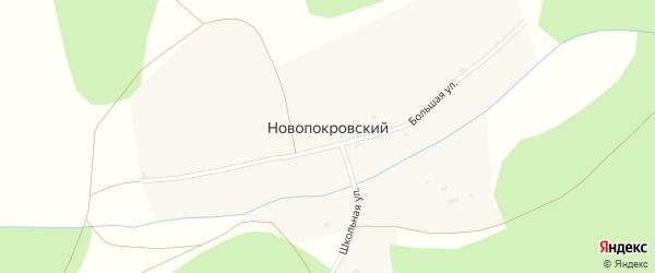 Большая улица на карте Новопокровского хутора с номерами домов