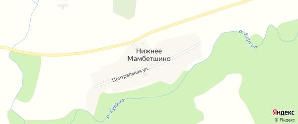 Центральный переулок на карте деревни Нижнее Мамбетшино с номерами домов
