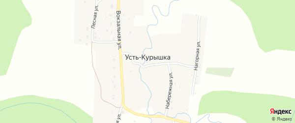Школьная улица на карте поселка Усть-Курышки с номерами домов