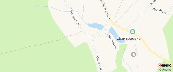 Совхозная улица на карте деревни Дмитриевки с номерами домов