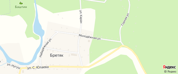 Молодежная улица на карте деревни Бретяк с номерами домов