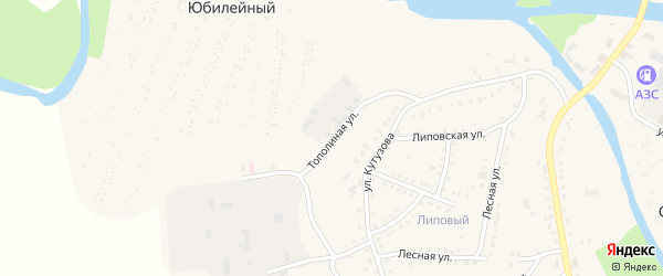 Тополинная улица на карте Аши с номерами домов