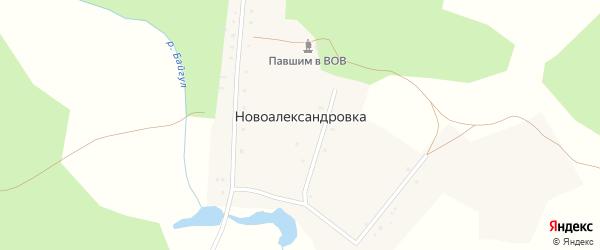 Каскинская улица на карте села Новоалександровки с номерами домов