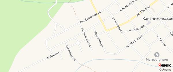 Пионерская улица на карте Кананикольского села с номерами домов
