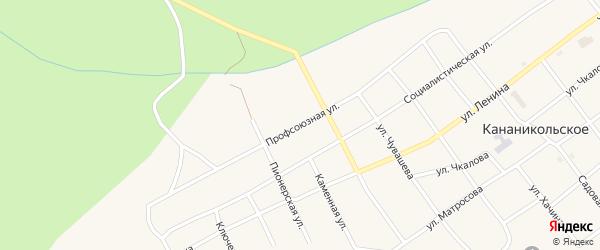 Профсоюзная улица на карте Кананикольского села с номерами домов