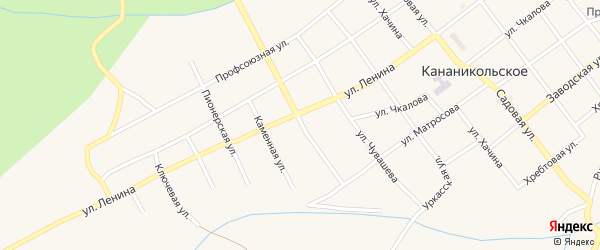 Улица Ленина на карте Кананикольского села с номерами домов