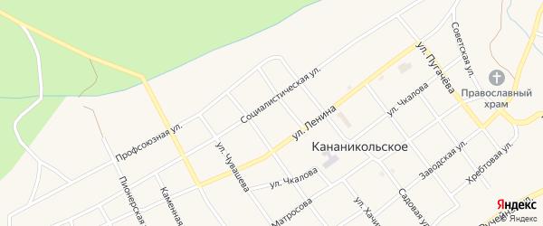 Социалистическая улица на карте Кананикольского села с номерами домов