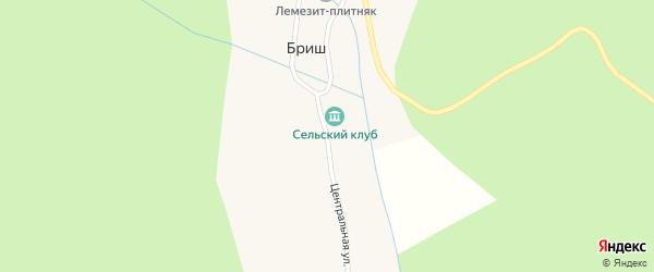 Центральная улица на карте села Бриша с номерами домов