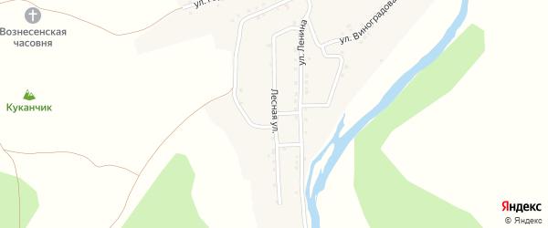 Лесная улица на карте села Нижнего Авзяна с номерами домов
