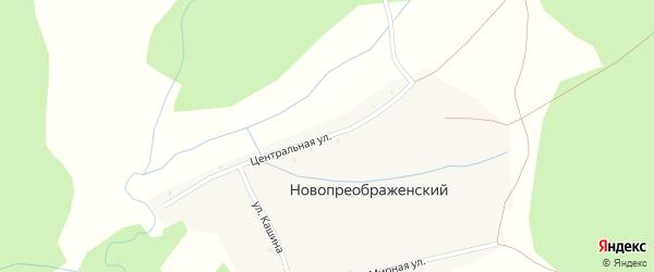 Центральная улица на карте Новопреображенского хутора с номерами домов