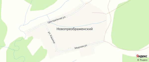Мирная улица на карте Новопреображенского хутора с номерами домов