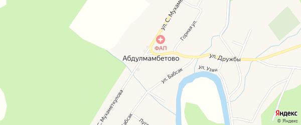Колхозная улица на карте деревни Абдулмамбетово с номерами домов