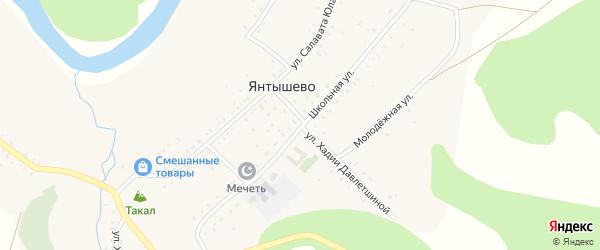 Школьная улица на карте деревни Янтышево с номерами домов