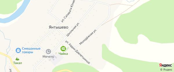 Молодежная улица на карте деревни Янтышево с номерами домов