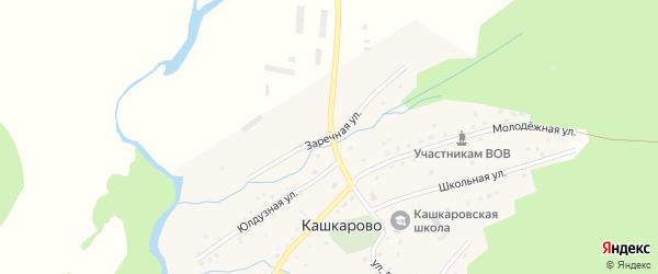 Заречная улица на карте села Кашкарово с номерами домов