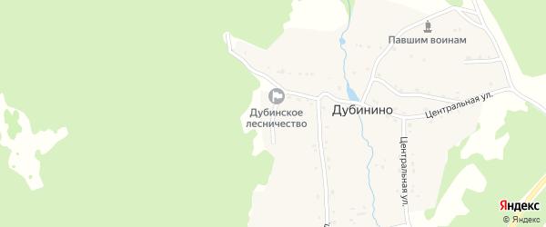 Новая улица на карте села Дубинино с номерами домов