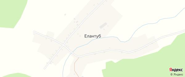 Речная улица на карте деревни Елантуба с номерами домов