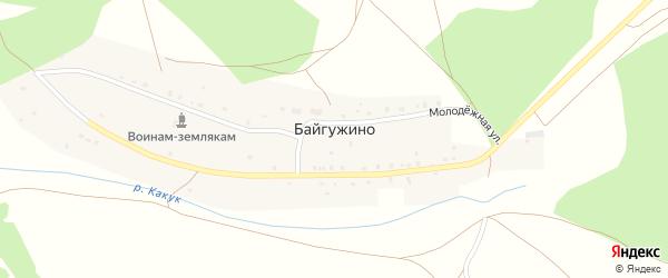 Улица Альмухамета на карте деревни Байгужино с номерами домов