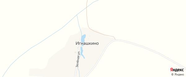 Зеленая улица на карте деревни Игнашкино с номерами домов