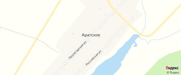 Российская улица на карте Аратского села с номерами домов