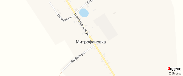 Центральная улица на карте села Митрофановки с номерами домов