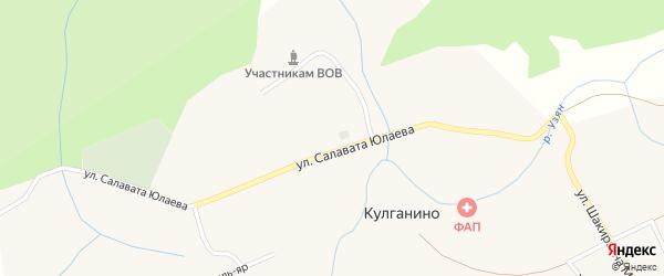 Улица Салавата Юлаева на карте деревни Кулганино с номерами домов
