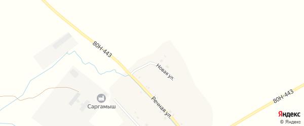 Новая улица на карте деревни Саргамыша с номерами домов