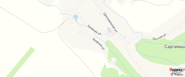 Зеленая улица на карте деревни Саргамыша с номерами домов