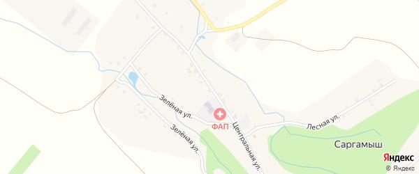 Центральная улица на карте деревни Саргамыша с номерами домов