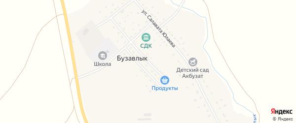 Улица Заки Валиди на карте деревни Бузавлыка с номерами домов