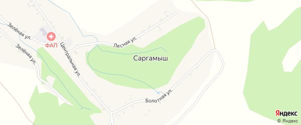 Лесная улица на карте деревни Саргамыша с номерами домов