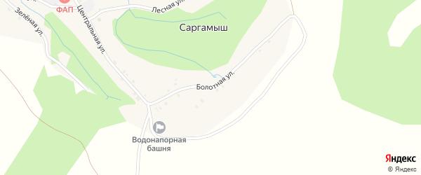 Болотная улица на карте деревни Саргамыша с номерами домов